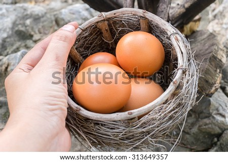 eggs in the basket - stock photo