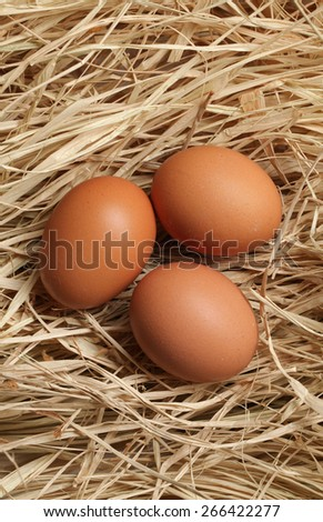 3 eggs on  grass - stock photo