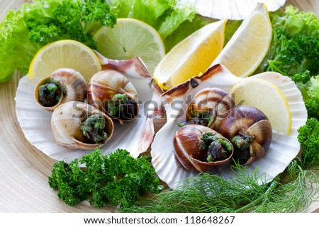 Escargots de Bourgogne (snails with herbs butter) - stock photo