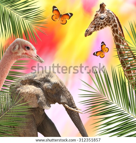 Exotic wildlife world. Giraffe, Ostrich, Elephant, Butterfly and leaves of a date palm on the natural background of a color flowers motion blur  - stock photo