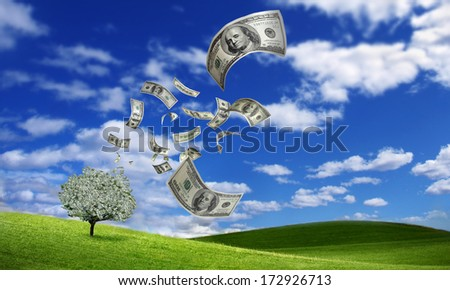 falling dollar bills from money tree - stock photo