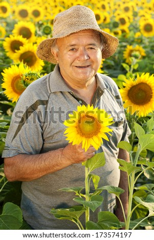 farmer in sunflower field - stock photo