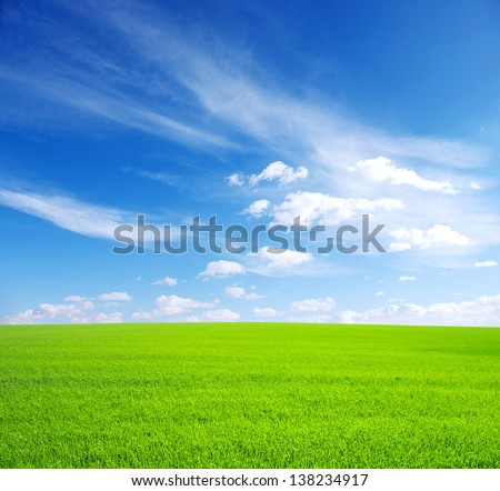 field and bright blue sky - stock photo