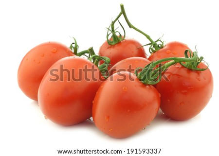 fresh and colorful italian plum tomatoes on a white background - stock photo