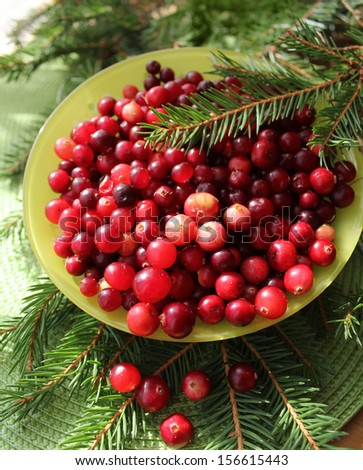 Fresh cranberries  - stock photo