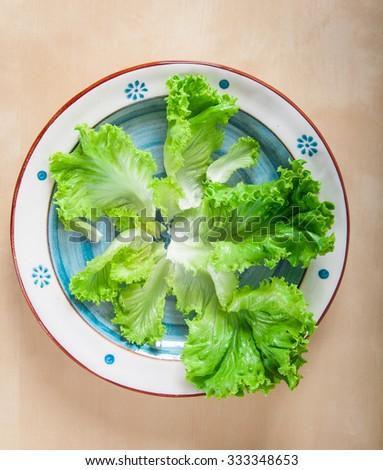 Fresh green lettuce leaves on hand painted terracotta dish - stock photo