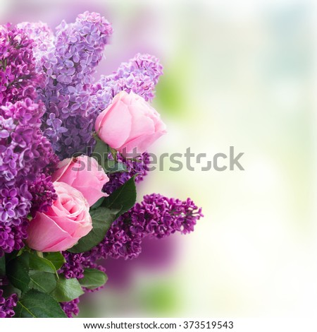 fresh purple Lilac flowers with pink roses close up over gqrden bokeh  background - stock photo