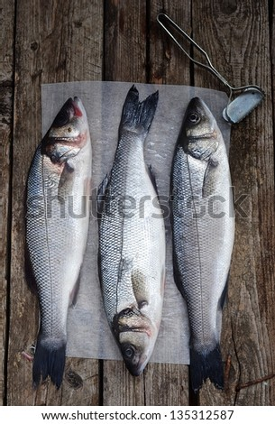fresh, raw sea bass on the catching board - stock photo