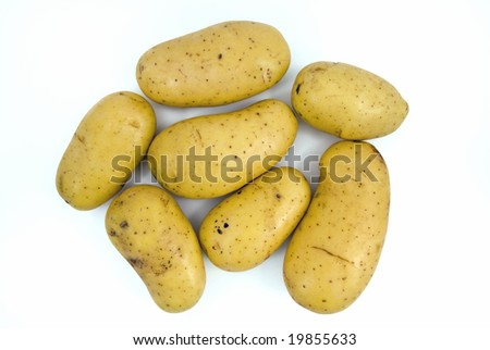 7 freshly harvested potatoes without roots and leaves. - stock photo