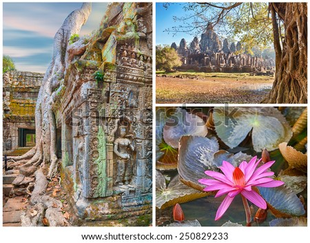 3 full size images collage. Bayon temple Ta Prohm roots and water lilly - stock photo