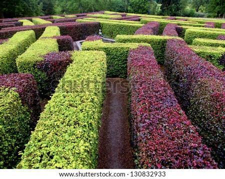 garden labyrinth green and red - stock photo