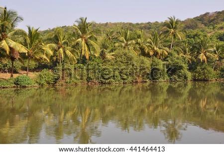 GOA, INDIA- MARCH 03,2013:Goa beaches - stock photo