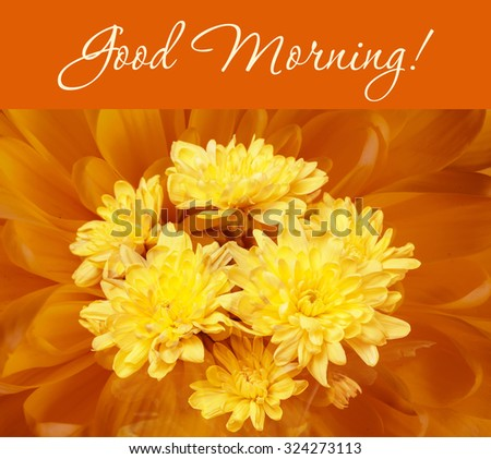 """Good Morning!"" greeting card.Colorful autumn wallpaper, background. Floral chrysanthemums fantasy, double exposure artistic effect, soft blur style.  - stock photo"