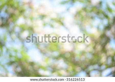 green and blue abstract defocused background with sunshine - stock photo