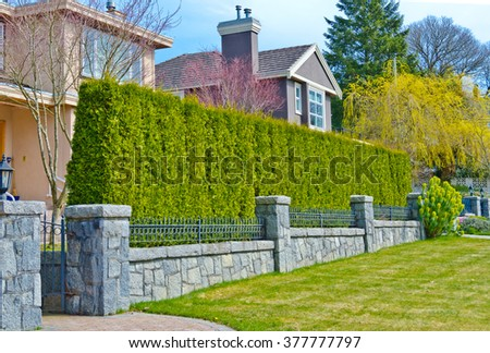 """""""Green fence ' from evergreen plants dividing the street and private property. Keeps privacy and security. Landscape trimming design. - stock photo"""