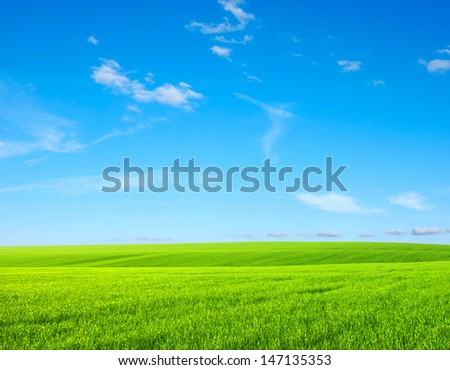 green grass and bright blue sky - stock photo