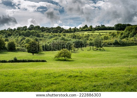 green meadow in Cote de Nuits near Beaune Bourgogne France - stock photo