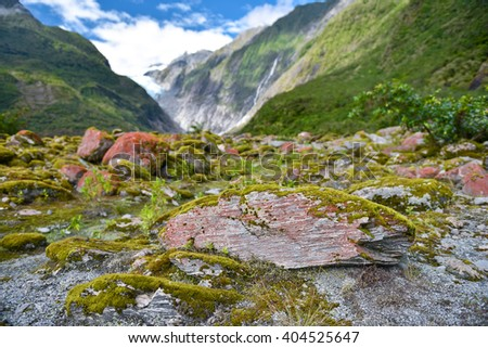 Green valley and stones in Franz Josef Glacier, New Zealand South Island - stock photo
