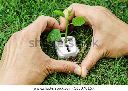 hands forming a heart shape around a tree growing on a socket / green energy / clean energy - stock photo