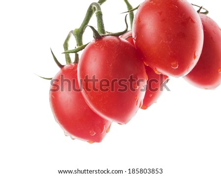 hanging tomatoes bunch with water drops, isolated - stock photo
