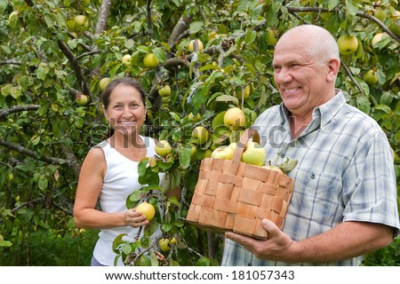 Happy mature  man and woman in apple garden. - stock photo