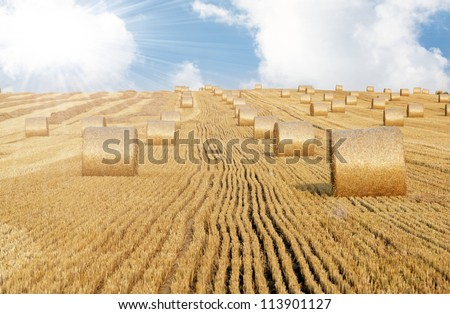 Hay bales and blue sky - stock photo