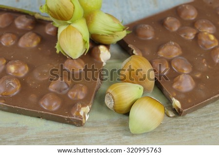 hazelnuts in shells and chocolate - stock photo