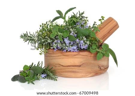 Herb leaf selection of golden thyme, oregano, purple sage, mint and  rosemary in flower in an olive wood mortar with pestle, isolated over white background. - stock photo