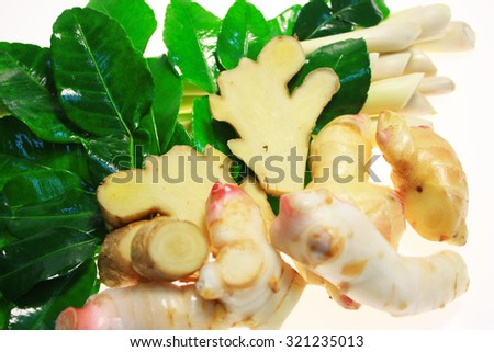 herbal Ingredients for tom-yam ,Set ingredient of thai spicy soup on white background.   - stock photo
