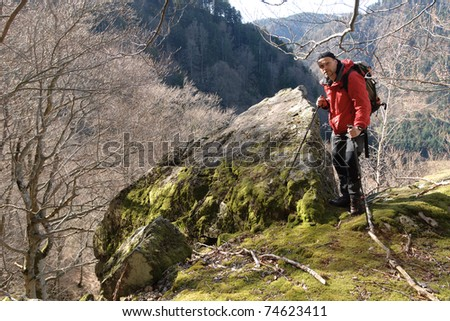 hiker, Black Forest, Germany - stock photo