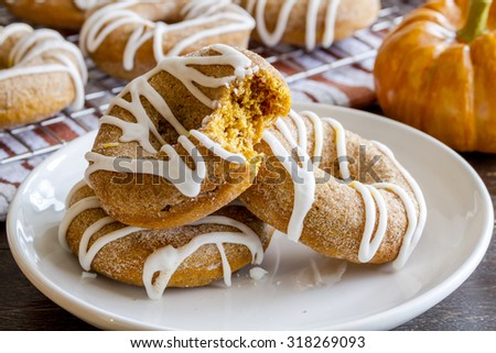 3 homemade cinnamon pumpkin donuts on white plate with bite taken out of one donut with small pumpkin in background - stock photo