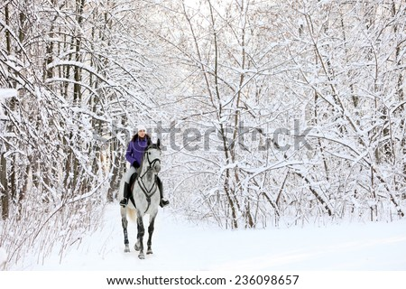 Horse and rider to walks in the snowy woods - stock photo