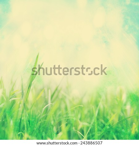 image from outdoor background series (sky and grass) toned with a retro vintage instagram filter effect - stock photo