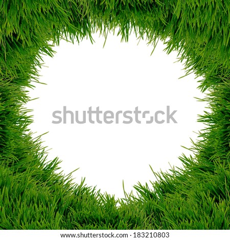 isolated fresh green grass on white background - stock photo