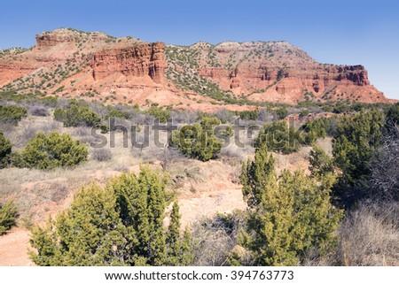 Juniperus monosperma (one-seed juniper) and red rocks.  Caprock Canyons State Park, Texas, US - stock photo