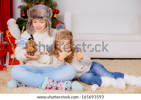 kids playing with dog chihuahua near the Christmas tree - stock photo