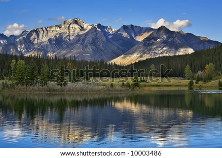 Lake in mountains of Canada and a fur-tree on coast - stock photo