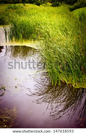 lake  in park/ landscape background - stock photo