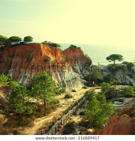 landscape with orange cliffs and pine trees on the Atlantic coast (Algarve, Portugal). instagram effect, square image - stock photo
