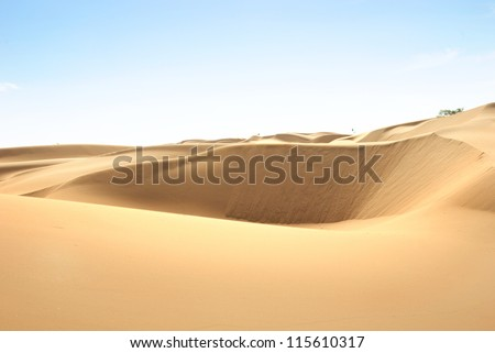Libyan Desert. Dense gold dust, dunes and beautiful sandy structures in the light of the low sun. Traces on sand. - stock photo