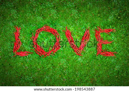 """""""Love"""" word shaped group of red chili peppers on the green grass - stock photo"""