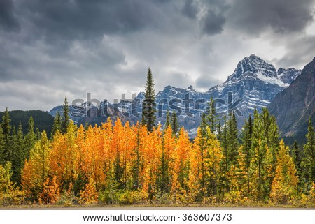 Majestic mountains and glaciers on the background of cloudy sky. Canadian Rockies, Banff National Park in the autumn. Bright orange bush beside the road - stock photo