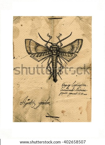 Mechanical insects,retro post card illustration - stock photo