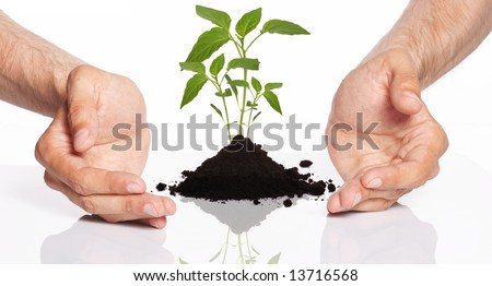 men holding a plant between hands - stock photo