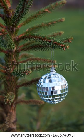mirror ball hanging on a Christmas tree branch outside - stock photo