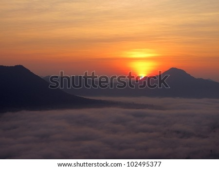 Morning sun. - stock photo