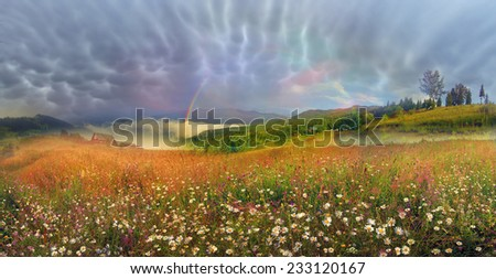 panorama of mountain alpine meadows in Transcarpathia - is the abundance of vegetation on  background of beautiful tops and interesting weather conditions. Thunder and of lightning danger to tourists - stock photo