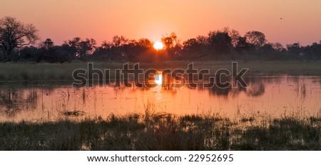 Panorama of Okavango Delta, Botswana - stock photo