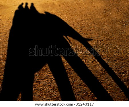 3 people's silhouette of riding an elephant - stock photo