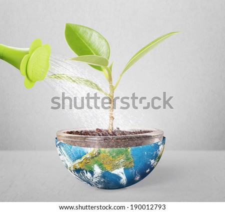 protect the environment concept earth with  tree ,Some components of this image are provided courtesy of NASA  - stock photo